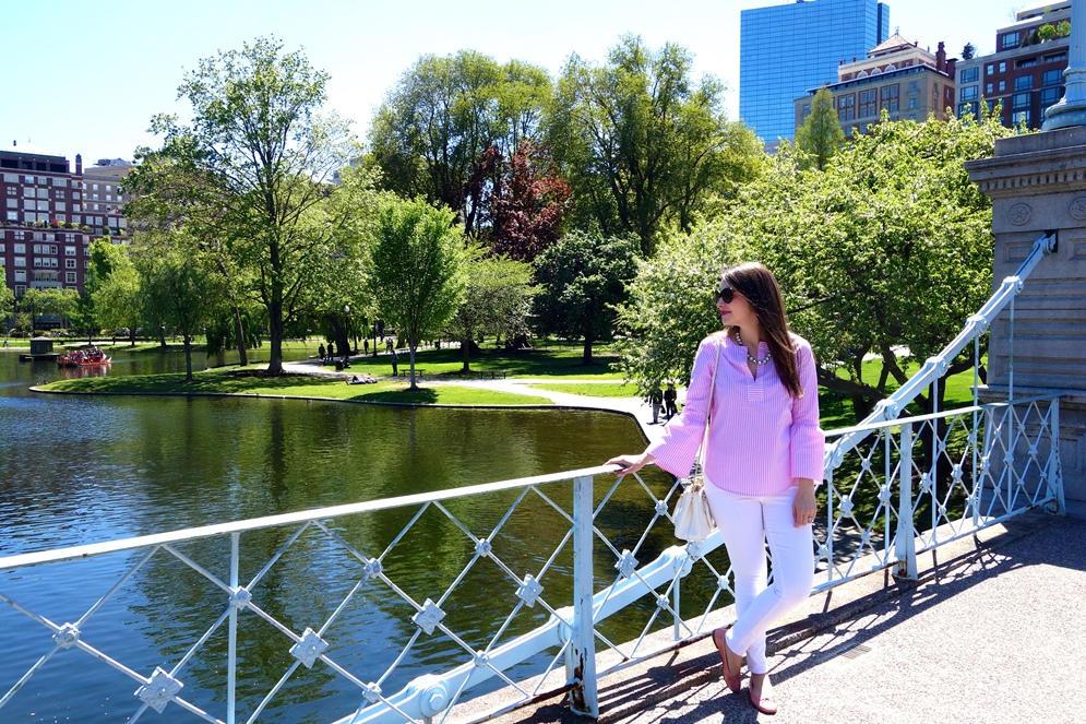 boston public garden, the-alyst.com