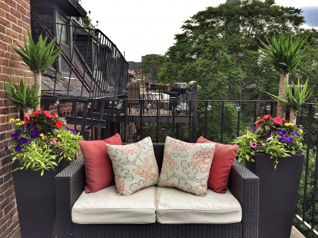 urban garden, boston, balcony garden, the-alyst.com