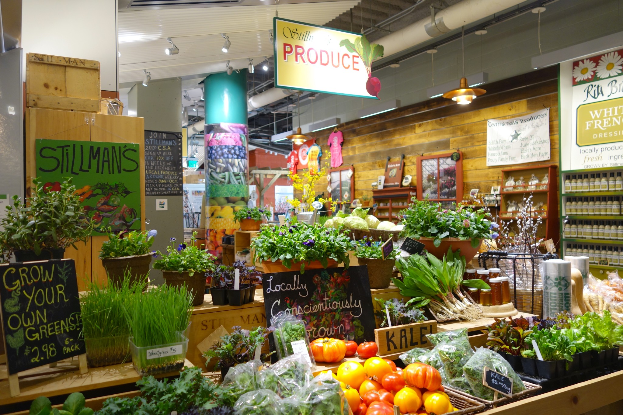 boston public market, stillman's farm, the-alyst.com