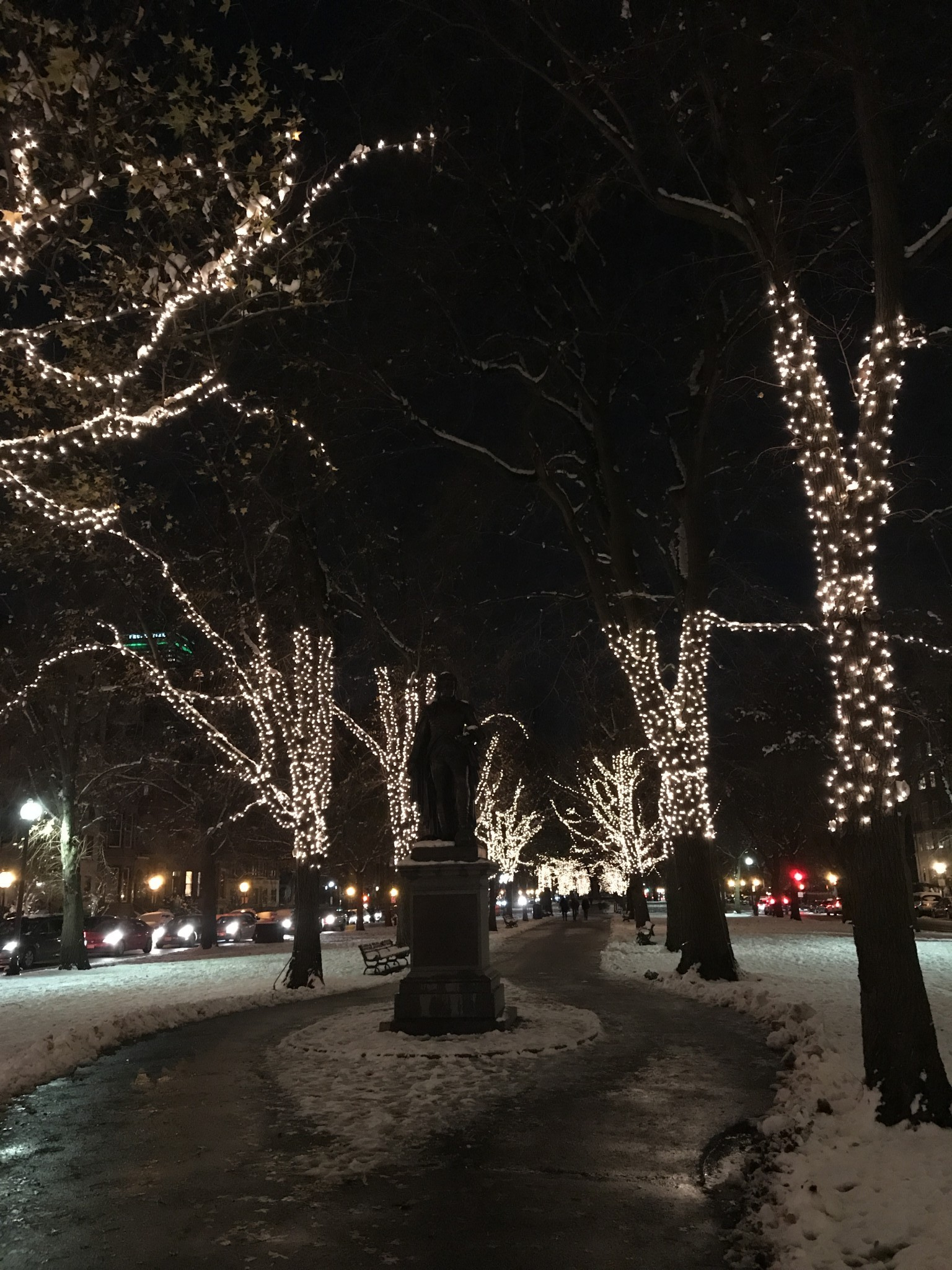 commonwealth avenue mall, holiday lights, the-alyst.com