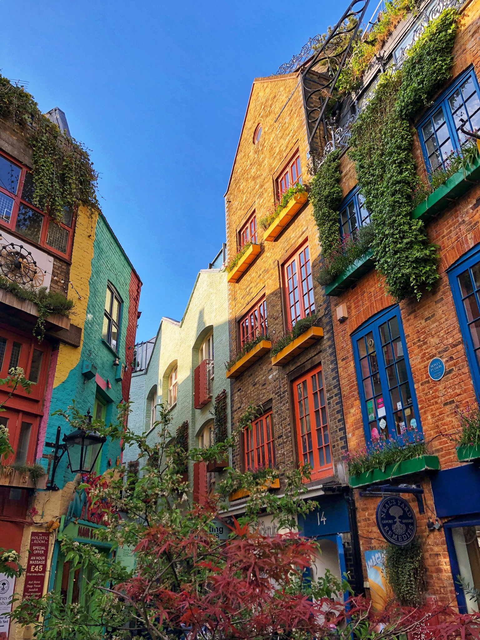 neal's yard, london, most instagrammable places in london, the-alyst.com