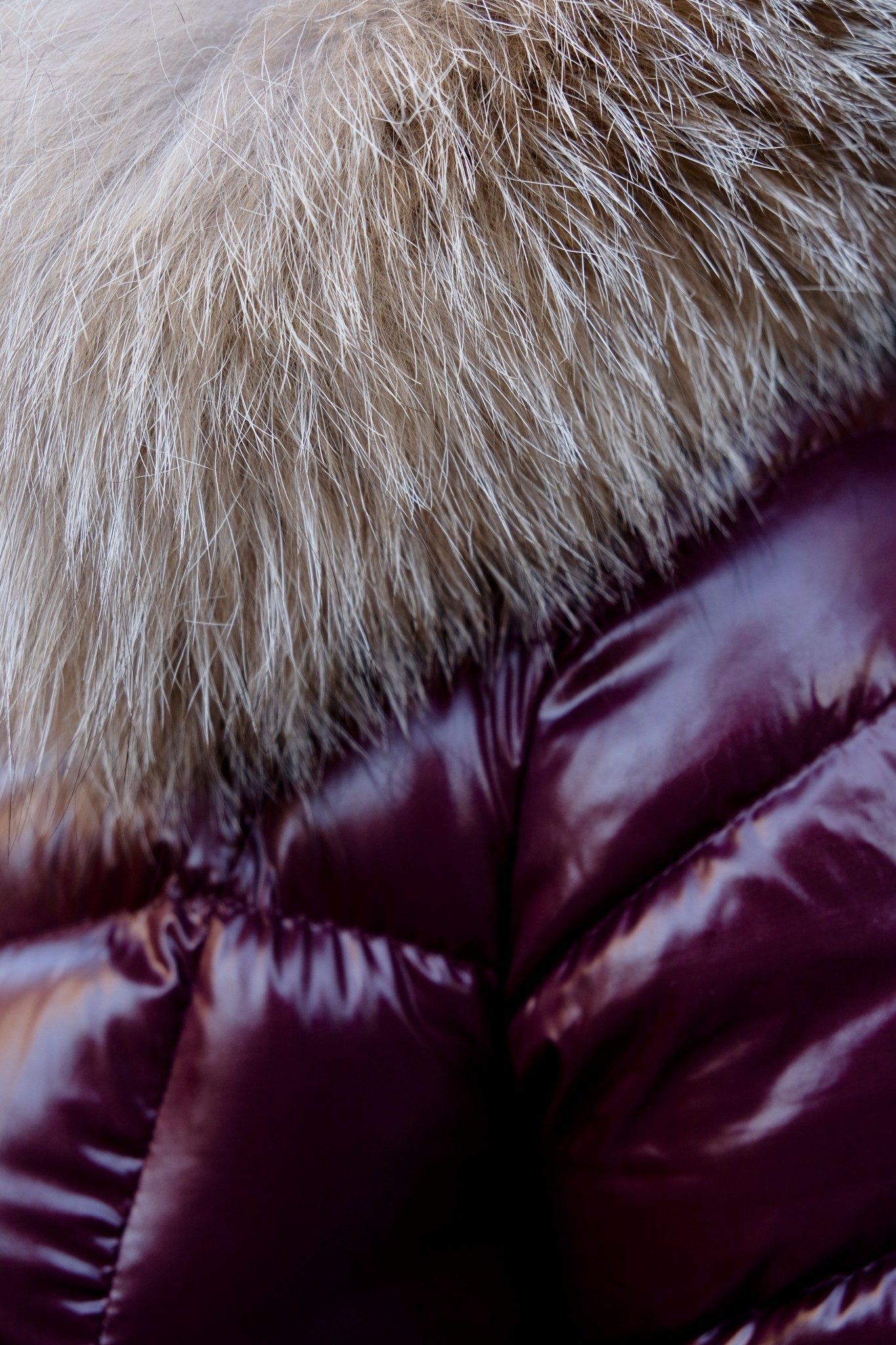 Moncler Fulmar, designer winter coat, the-alyst.com