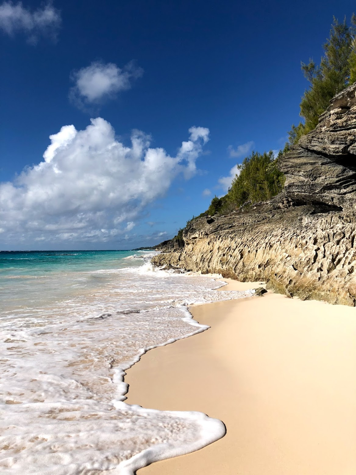 elbow beach, bermuda, the-alyst.com