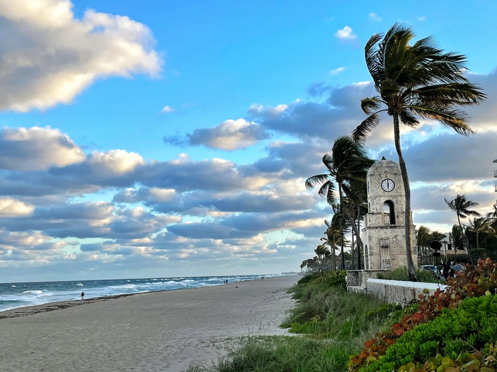 palm beach guide, the-alyst.com