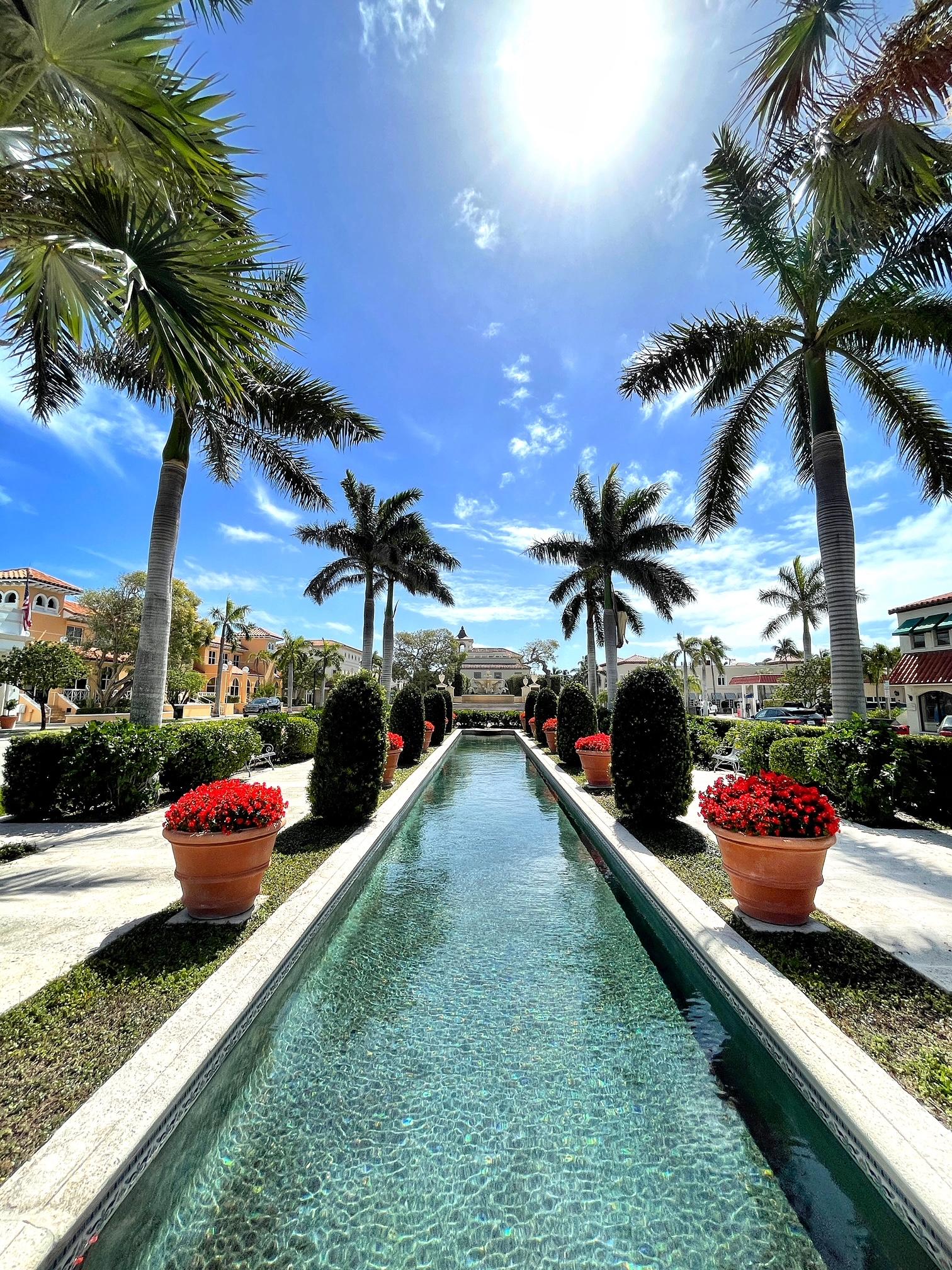 palm beach, the-alyst.com