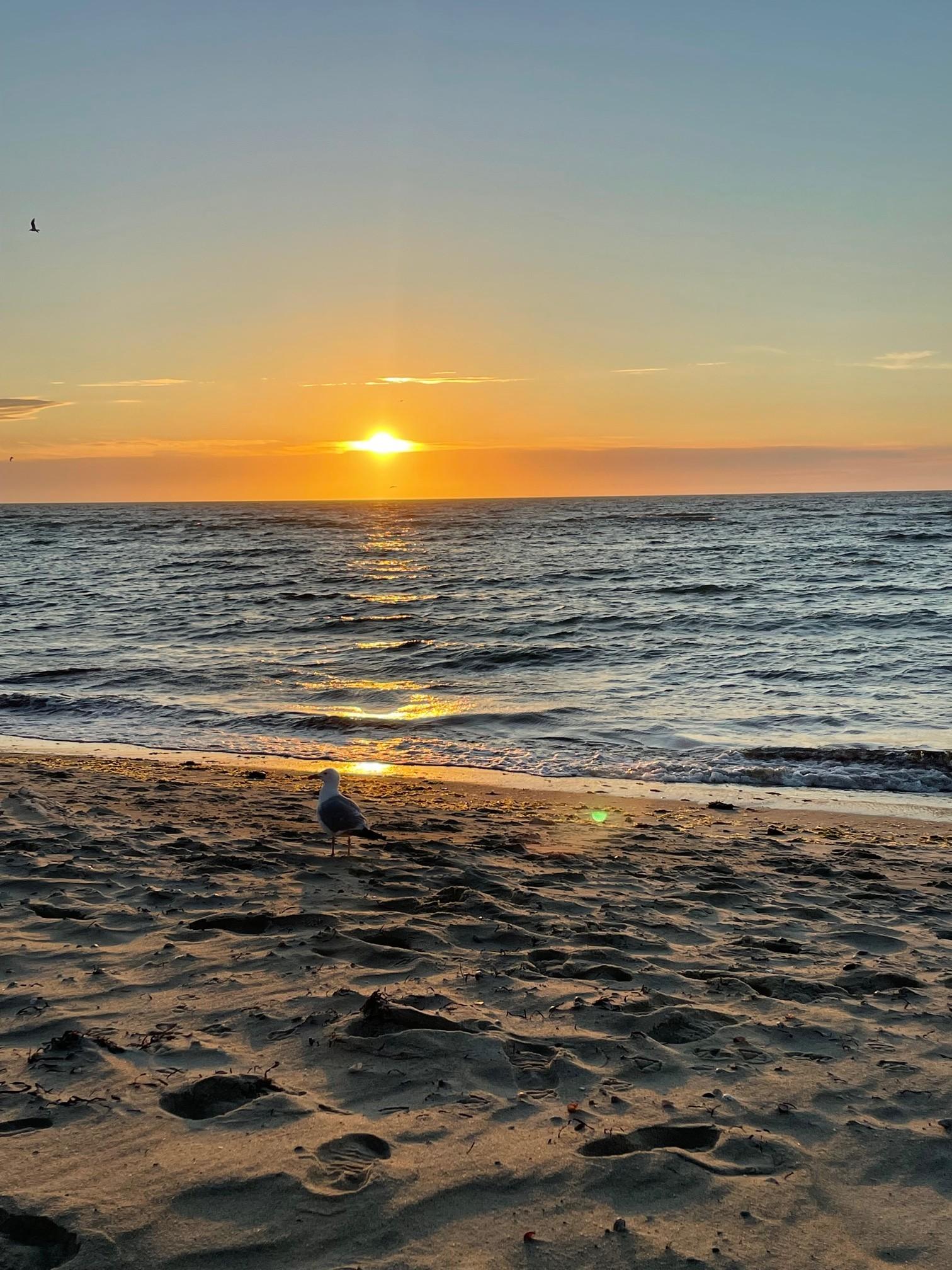 jetties beach, nantucket, the-alyst.com
